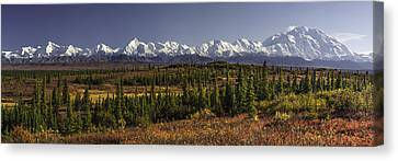 Denali Canvas Print - Denali Tundra by Ed Boudreau