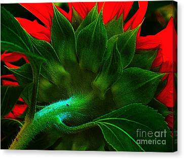 Canvas Print featuring the photograph Derriere by Elfriede Fulda