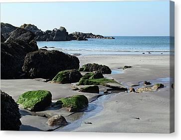 Derrynane Beach Canvas Print