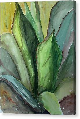 Canvas Print featuring the painting Desert Agave by Marilyn Barton