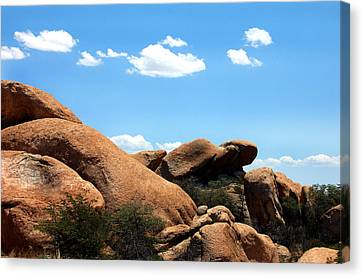 Desert Ancients Canvas Print by Heather S Huston