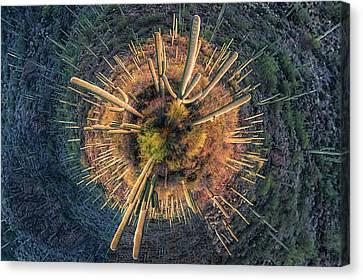 Canvas Print featuring the photograph Desert Big Bang by Lynn Geoffroy