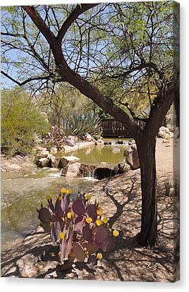 Carefree Arizona Canvas Print - Desert Blooms by Gordon Beck