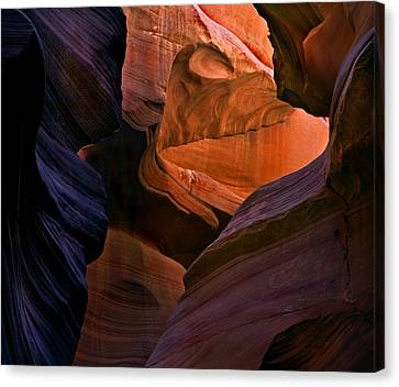 Desert Bridge Canvas Print by Mike  Dawson