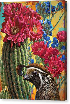 Quail Canvas Print - Desert Dreaming by David Palmer
