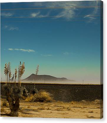Desert Dust Canvas Print