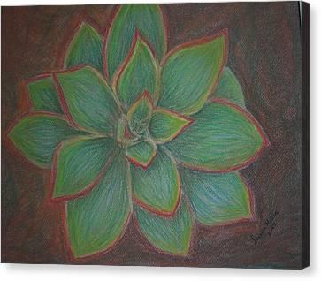 Desert Flower Canvas Print by Dawn Marie Black