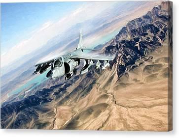 Desert Fox Harrier Canvas Print by Peter Chilelli
