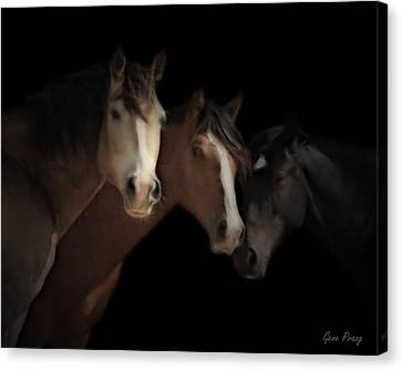 Desert Ghosts Canvas Print by Gene Praag