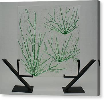 Desert Grass Canvas Print by Louis Copper