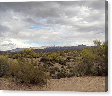Canvas Print featuring the photograph Desert Moods by Gordon Beck