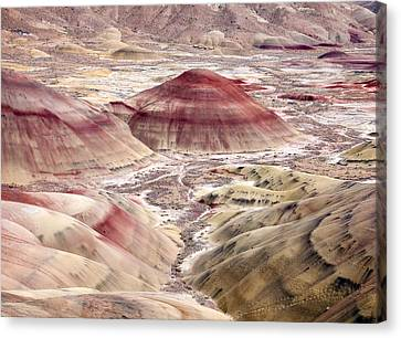 Desert Palette Canvas Print by Mike  Dawson