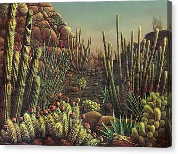 Desert Potpourri  Canvas Print by James Larkin
