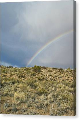 Desert Rainbow - Socorro - Nm Canvas Print by Steven Ralser