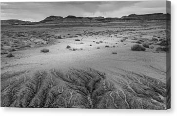 Petrified Forest Arizona Canvas Print - Desert Rivulets by Joseph Smith