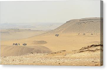 Canvas Print featuring the photograph Desert by Silvia Bruno