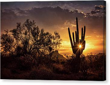 Canvas Print featuring the photograph Desert Skylight  by Saija Lehtonen