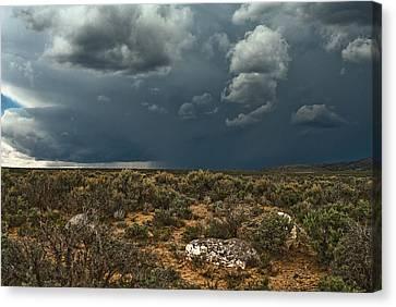Desert Storm 2 Canvas Print