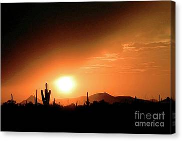 Desert Sunset Canvas Print by Merton Allen