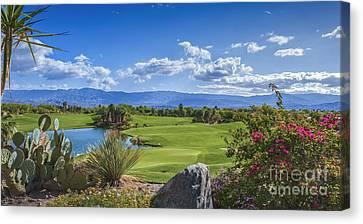 Desert Willow Golf Course  Canvas Print by David Zanzinger