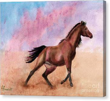 Bay Horse Canvas Print - Desert Wind by Laura Russell