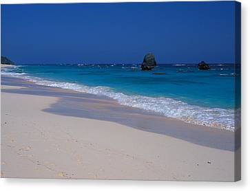 Deserted Beach In Bermuda Canvas Print by Carl Purcell