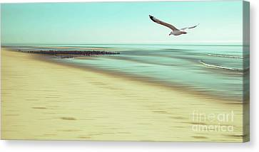 Canvas Print featuring the photograph Desire Light Vintage2 by Hannes Cmarits