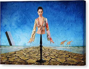 Desire No. 11 Canvas Print