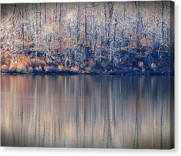Desolate Splendor Canvas Print