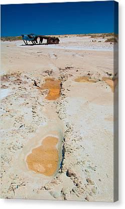 Desolate Canvas Print by Tim Nichols