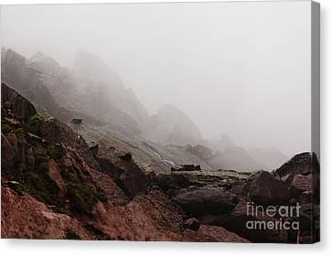 Canvas Print featuring the photograph Still Untouched By Men by Dana DiPasquale