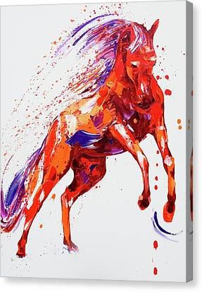 Jumping Horse Canvas Print - Destiny by Penny Warden