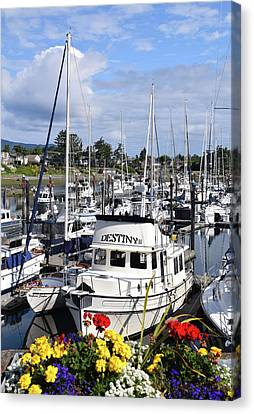 Destiny Sidney Harbor British Columbia Canada Canvas Print by Barbara Snyder