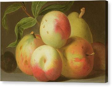 Detail Of Apples On A Shelf Canvas Print by Jakob Bogdany