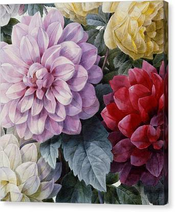 Detail Of Dahlias And Roses Canvas Print by Camille de Chantereine