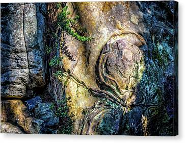 Canvas Print featuring the photograph Details In The Rock by James Barber