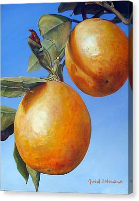 Deux Oranges Canvas Print by Muriel Dolemieux