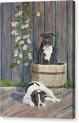 Devilish Duo At Rest Canvas Print by Ally Benbrook