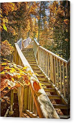 Devil's Kettle Stairway Canvas Print by Linda Tiepelman