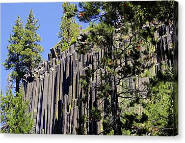 Stacked Canvas Print - Devils Postpile - America's Volcanic Past by Christine Till