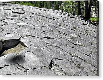 Woodpile Canvas Print - Devils Postpile - Nature And Science by Christine Till