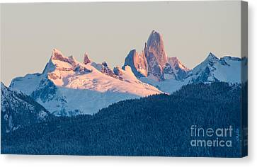 Devils Thumb Alpenglow Canvas Print by Mike Reid