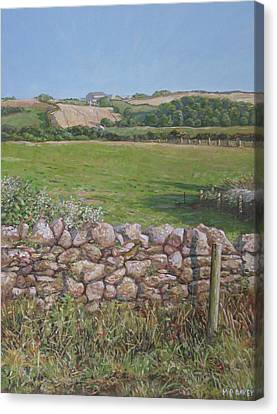 Canvas Print featuring the painting Devon Field And Drystone Wall by Martin Davey