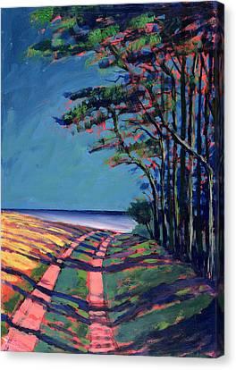 Devon Canvas Print by Paul Powis