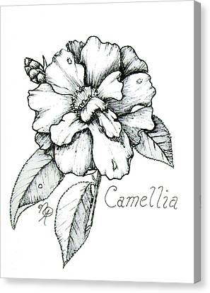 Dew Kissed Camellia Canvas Print