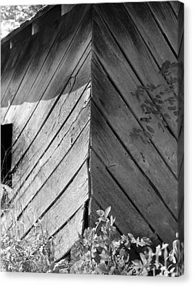 Canvas Print featuring the photograph Diagonals by Curtis J Neeley Jr