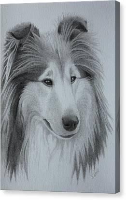 Diamond Rough Collie Canvas Print
