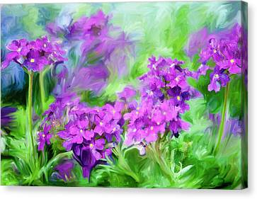 Dianthus Flowers Canvas Print by Frank Tschakert