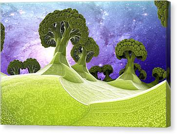 Broccoli Planet Canvas Print by Dr-Pen