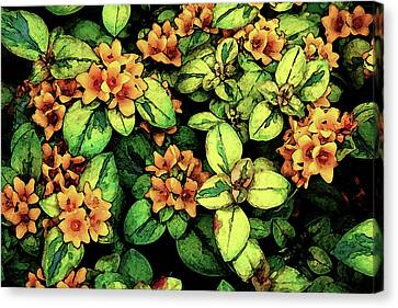 Digital Painting Quilted Garden Flowers 2563 Dp_2 Canvas Print